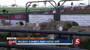 Wilson County Fair begins Friday in Lebanon [Video]