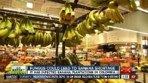 Ag Report: Fighting rural farm crime; banana disease; and ag grant award [Video]