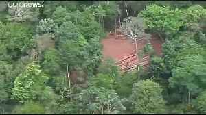 Brazilian government defends record on Amazon deforestation [Video]