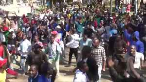 Tensions flare as Zimbabwe police beat protesters [Video]