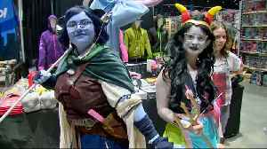 Silicon Valley Comic Con Turns 4 [Video]