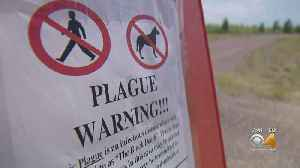 Rocky Mountain Arsenal Wildlife Refuge Reopens After Plague Concerns [Video]