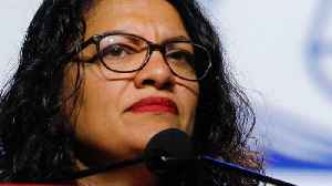'May God Ruin Him': Rep. Rashida Tlaib's Grandma Curses Trump