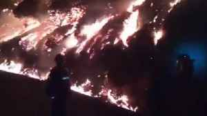 Firefighters Evacuate 2000 People as Fire Rages on Gran Canaria [Video]
