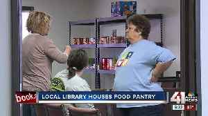 Local library houses food pantry [Video]