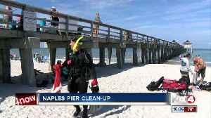 Divers volunteer to clean up debris under the Naples Pier [Video]