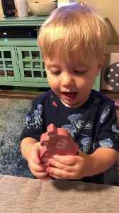 Adorable Toddler Makes Grunting Noises Like a Pig [Video]