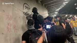 Hong Kong protesters spray-paint Pepe the Frog meme on wall [Video]