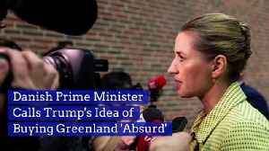 Danish Prime Minister Calls Trump's Idea of Buying Greenland 'Absurd' [Video]