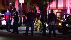 Man shot in the head in Los Angeles district [Video]