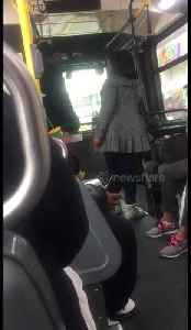 News video: New York woman relentlessly argues with bus driver after refusing to pay the fare