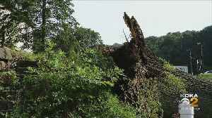 Cleanup Efforts In Millvale And Lawrenceville Begin Following Microburst [Video]