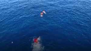 Migrants jump off rescue boat to try to reach Italian island