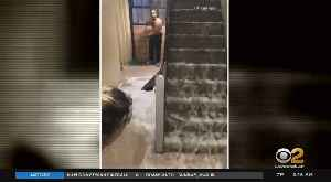 Broken Pipe Floods Brooklyn Public Housing Building [Video]