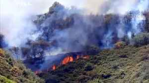 Gran Canaria wildfire rages out of control as 9,000 are evacuated [Video]