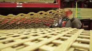 News video: Home Depot warns of tariff impact