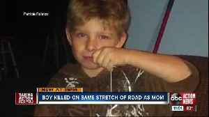 Palmetto boy killed in hit-and-run crash on US 19, same road where mom died months earlier [Video]