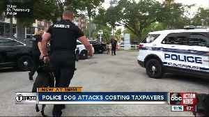 Police dog attacks costing taxpayers [Video]