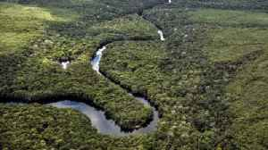 From rebels to saviours of the Amazon rainforest [Video]