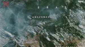 Amazon Rain Forest Fires Can Be Seen From Space [Video]