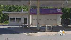 Walpole Police Find Nearly 60 Pot Plants In Vacant Route 1 Gas Station [Video]