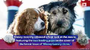 Disney Releases First Look at Live-Action 'Lady and the Tramp' [Video]
