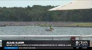 Algae Bloom Warning Issued For Manasquan Reservoir [Video]