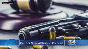 Florida Democrats Want State Legislative Session On Guns [Video]