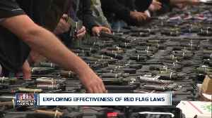 Red Flag Law to go into effect Saturday [Video]
