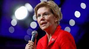 Pros and Cons of Elizabeth Warren's 50/30/20 Spending Rule [Video]