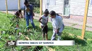 Cleveland Heights residents create garden for Nepalese families now living there [Video]