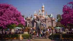 New Zealand Teen with Measles May Have Exposed Disneyland Visitors Last Week [Video]