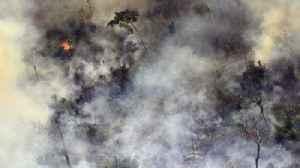 News video: Brazil's president under pressure over Amazon fires