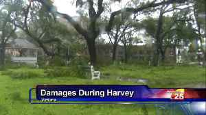 Hurricane Harvey Look Back [Video]