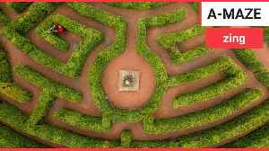 Stunning images show Prince Charles' maze [Video]