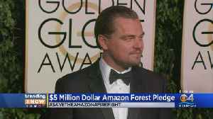 News video: Trending: DiCaprio Pledges $5 million To Save Amazon