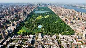 Toxic Algae Found In New York City Parks [Video]