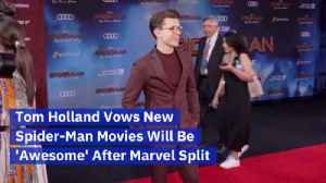 Tom Holland Speaks Up On His Spider-Man Fate [Video]