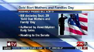 California resolution looks to make September 29th Gold Star Mothers and Family Day [Video]
