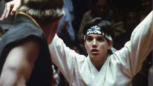 Ralph Macchio Looks Back at 'Karate Kid,' Talks 'Cobra Kai' Season 2 | Heat Vision Breakdown [Video]