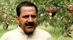 Kashmir shutdown: Farmers struggle to make a living [Video]