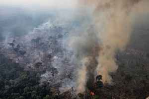 News video: Brazil Will Reject $20 Million International Aid Offer for Amazon Fires