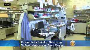 Researchers Develop New Drug To Treat Aggressive Brain Cancer [Video]