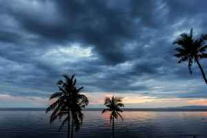 News video: Tropical Storm Dorian May Intensify Before Hitting Florida