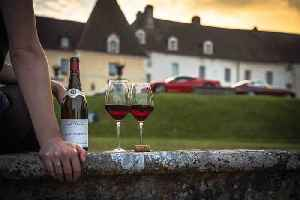 7 Regions to Visit for Wine Lovers (Aug. 28, National Red Wine Day) [Video]