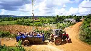 Watch: Tractor pool for Cuba's children tours tobacco zone [Video]