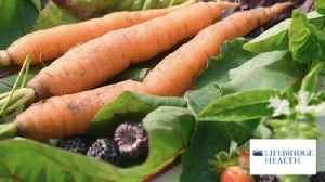 Health Beat: Plant-based diet leads to fewer heart problems [Video]