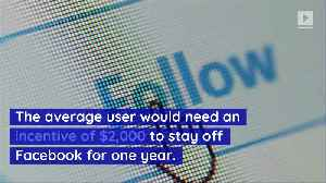 How Does Quitting Facebook Affect Your Brain? [Video]