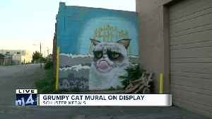 Grumpy Cat mural on display in Milwaukee [Video]