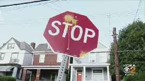 Sheraden Neighborhood Covered In Paintballs [Video]